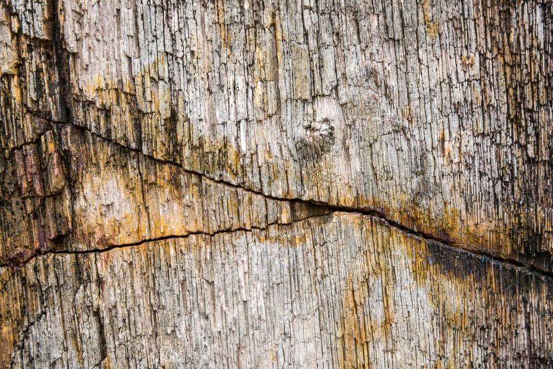 Cracks in Event Registration