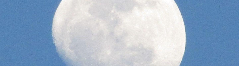 Breca Virtual Swimrun Series banner image
