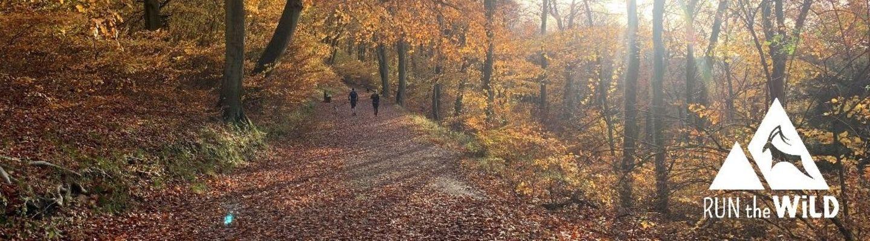 Run the Wild - Autumn 10K banner image