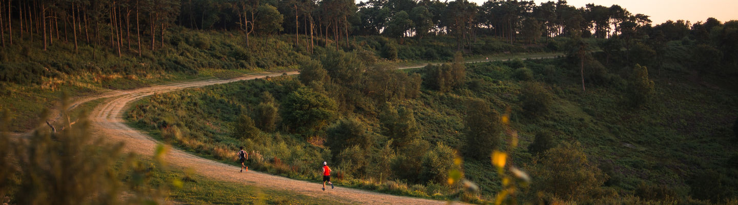 Leith Hill Sunset 10km