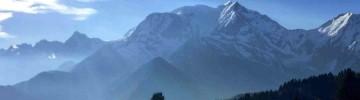 Run the Wild - Intermediate Alps