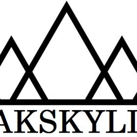 Peak Skyline 2020